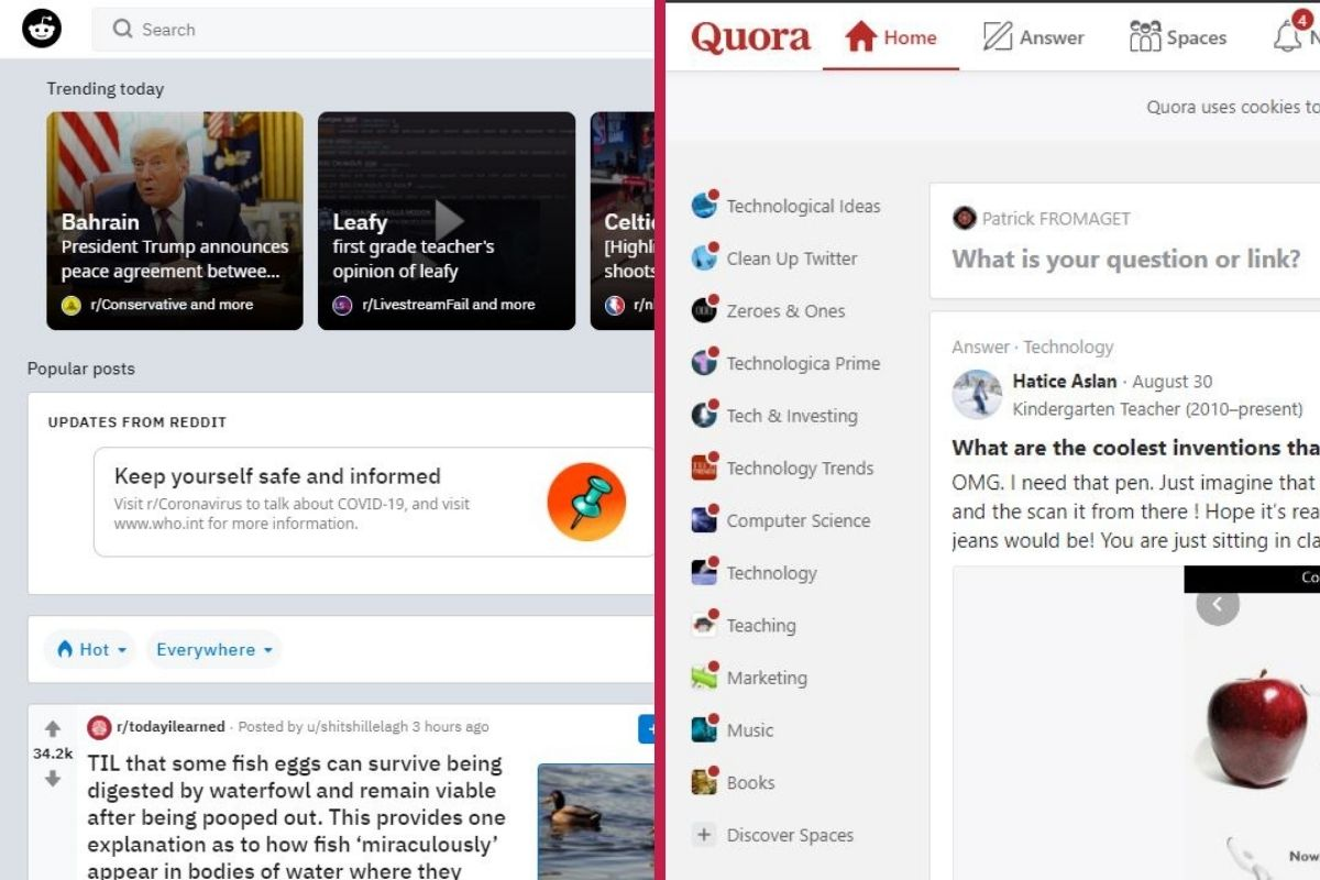 what is the difference between quora and reddit